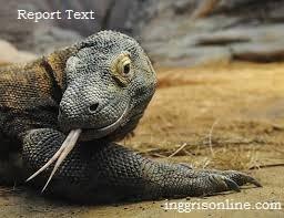pengertian dan ciri-ciri report text dan contohnya serta penjelasan lengkapnya